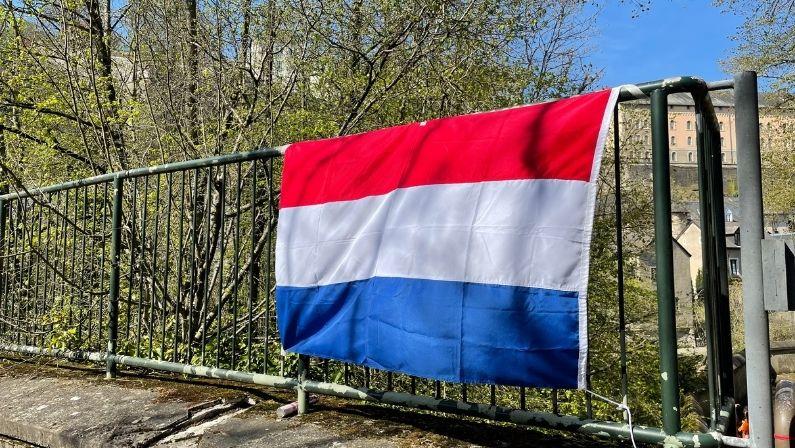 NTC Luxemburg_Schoolgids
