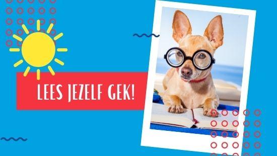gekke hond met bril